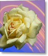 Yellow Rose 3 Metal Print