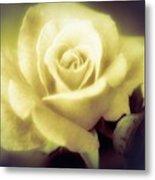 Yellow Rose Smoky Misty Look Metal Print