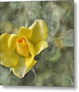 Yellow Rose With Old Marbel Texture Background Metal Print