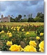 Yellow Roses And Dark Sky Metal Print