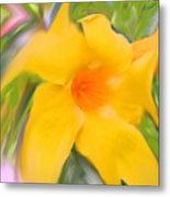 Yellow Stretch Metal Print