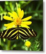 Yellow Stripes on Yellow Flower Metal Print