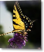 Yellow Touch Metal Print