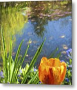 Yellow Tulip In Giverny  Metal Print