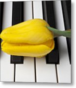Yellow Tulip On Piano Keys Metal Print by Garry Gay