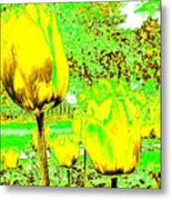 Yellow Tulips Abstract Metal Print