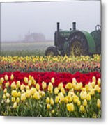 Yellow Tulips And Tractors Metal Print