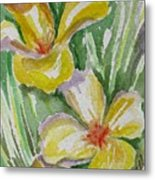 Yellow Wild Flowers II Metal Print