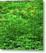 Yellow Wildflowers Metal Print