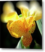 Yellow With Red Spots Metal Print