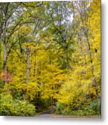 Yellow With Vertical Lines Metal Print