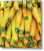 Yellow Zucchini Metal Print