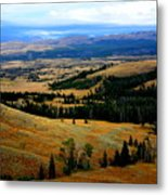 Yellowstone Metal Print by Carrie Putz