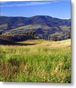 Yellowstone Landscape 3 Metal Print