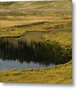 Yellowstone River Pond Metal Print