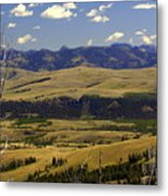 Yellowstone Vista 2 Metal Print