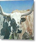 Yes, This Is Texas Metal Print