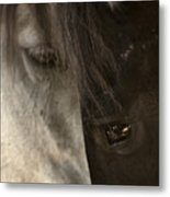 Ying And Yang Metal Print by Ron  McGinnis