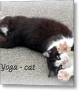 Yoga - Cat Metal Print