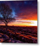 Yorkshire Beauty Metal Print