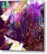 Yorkshire Puppy Domestic Animal  Metal Print