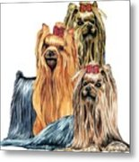 Yorkshire Terriers Metal Print