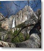 Yosemite Falls Tree Metal Print