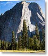 Yosemite Meadow 2 Metal Print