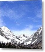 Yosemite Park Metal Print