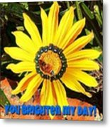 You Brighten My Day Metal Print