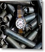 You Guessed It - Spring Time Metal Print
