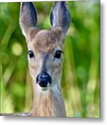 Young And Pretty Metal Print