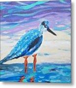 Young Seagull Coastal Abstract Metal Print
