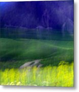 Young Valley Metal Print