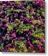 Your Spring Bed Metal Print