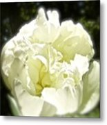Your World For A Moment Metal Print