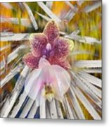 Yucca Dreaming Of Orchids Metal Print
