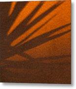Yucca Shadow Metal Print