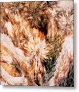 Yucca Warm Patch Metal Print