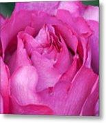 Yves Piaget Rose Metal Print