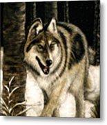 Zane Gray Wolf Metal Print