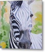 Zebra Crossing Metal Print