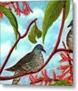 Zebra Doves Or Barred Dove Birds #309 Metal Print