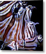 Zebra Fish Metal Print