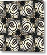 Zebra IIi Metal Print