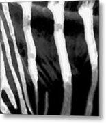Zebra Lines Metal Print