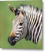 Zebra Portrait Metal Print by Trevor Wintle