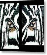 Zebras Eye - Studio Abstract  Metal Print