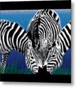 Zebras In Blue Oasis Metal Print