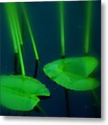 Zen Photography Green  Metal Print